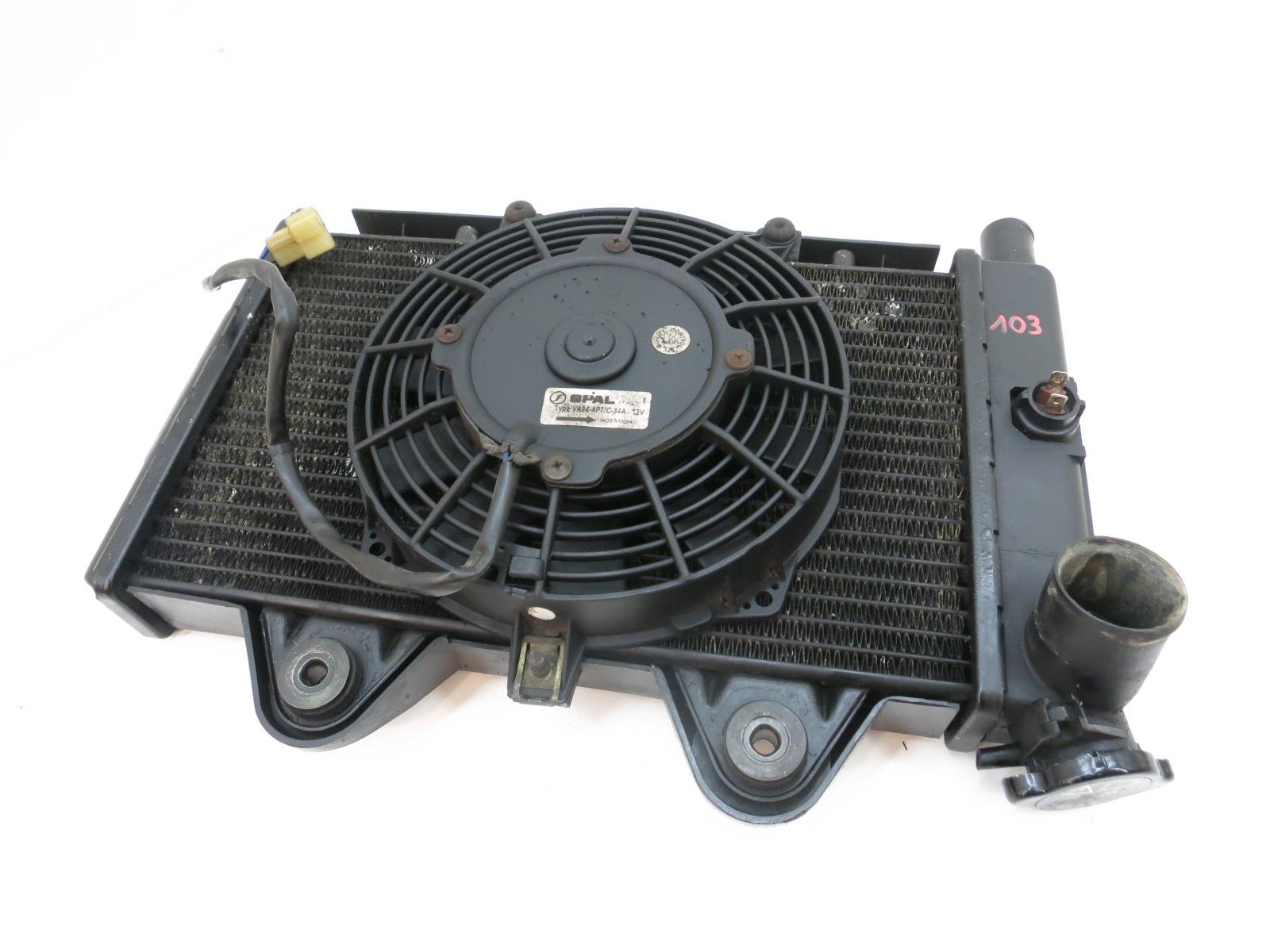 triumph trophy 900 t300e radiatore ad acqua radiatore. Black Bedroom Furniture Sets. Home Design Ideas